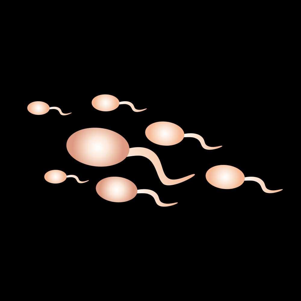 【科普】精液异常、质量差,备孕失败也可能是男人的问题